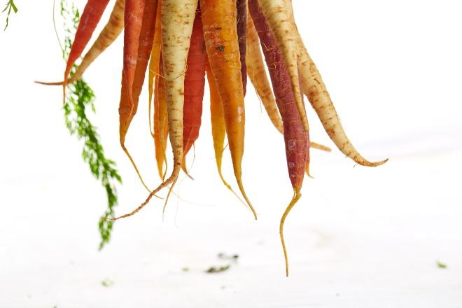 carrots-1149173_1920