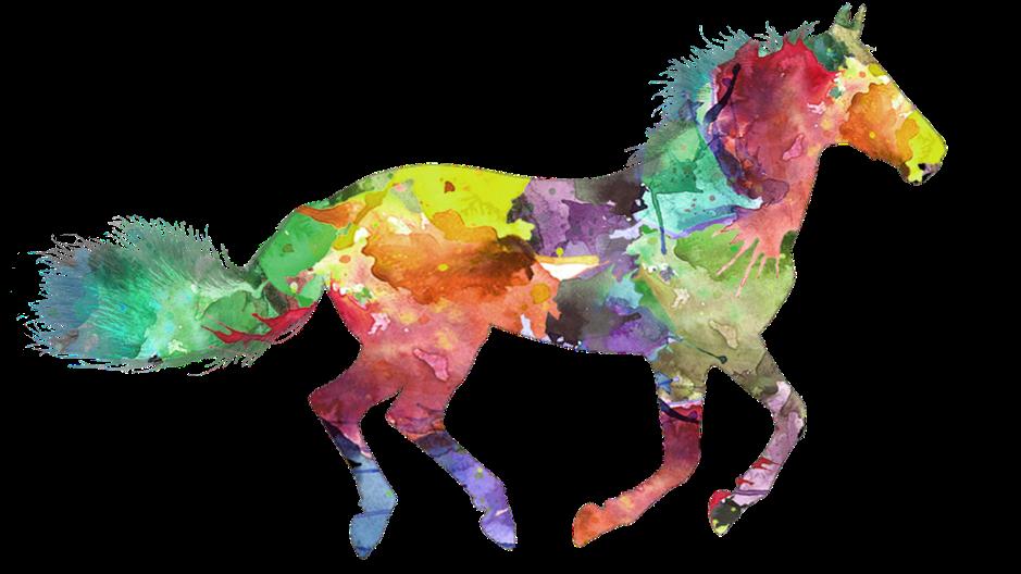 horse-3317004_1280